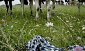 Økologisk landmand