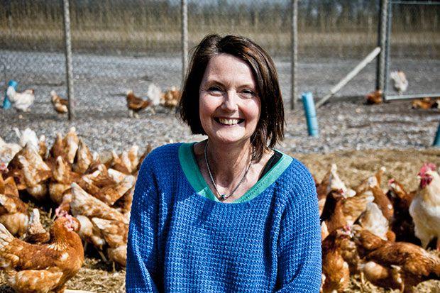 Når Karin Petersen står i sin biodynamiske hønsegård i selskab med 12.000 høns og omtrent 400 haner oplever hun ofte øjeblikke af stor lykke. Foto: Morten Telling