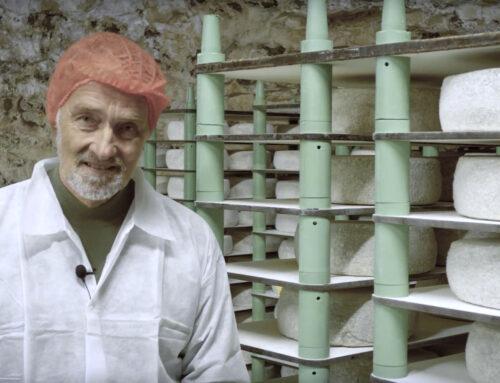Film: Thises Grubeost